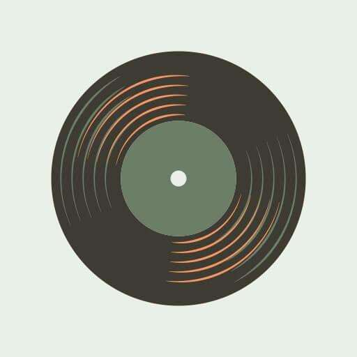 The vinyl record